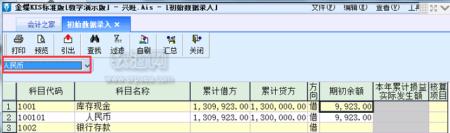 人民币科目数据录入