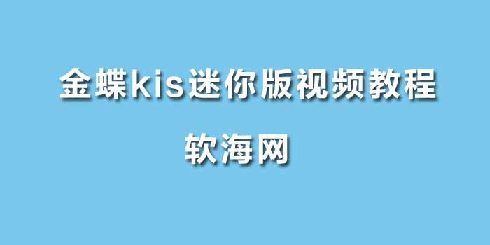 金蝶kis标准迷你视频教程